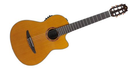 The guitar is flawless. The cedar top is clearly visible under an amber-toned gloss finish