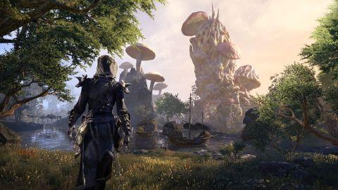 The Elder Scrolls Online: Morrowind review | PC Gamer