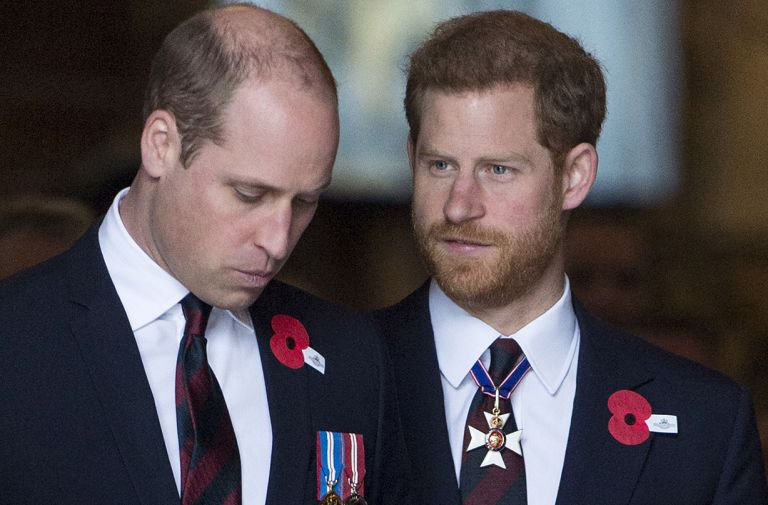 prince harry prince william heartbreaking speech princess diana