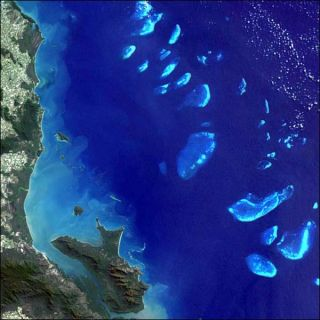 Great Barrier Reef: Facts, Location & Animals | Live Science