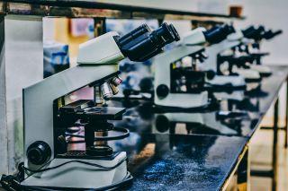 teach science remotely