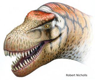 T. rex relative