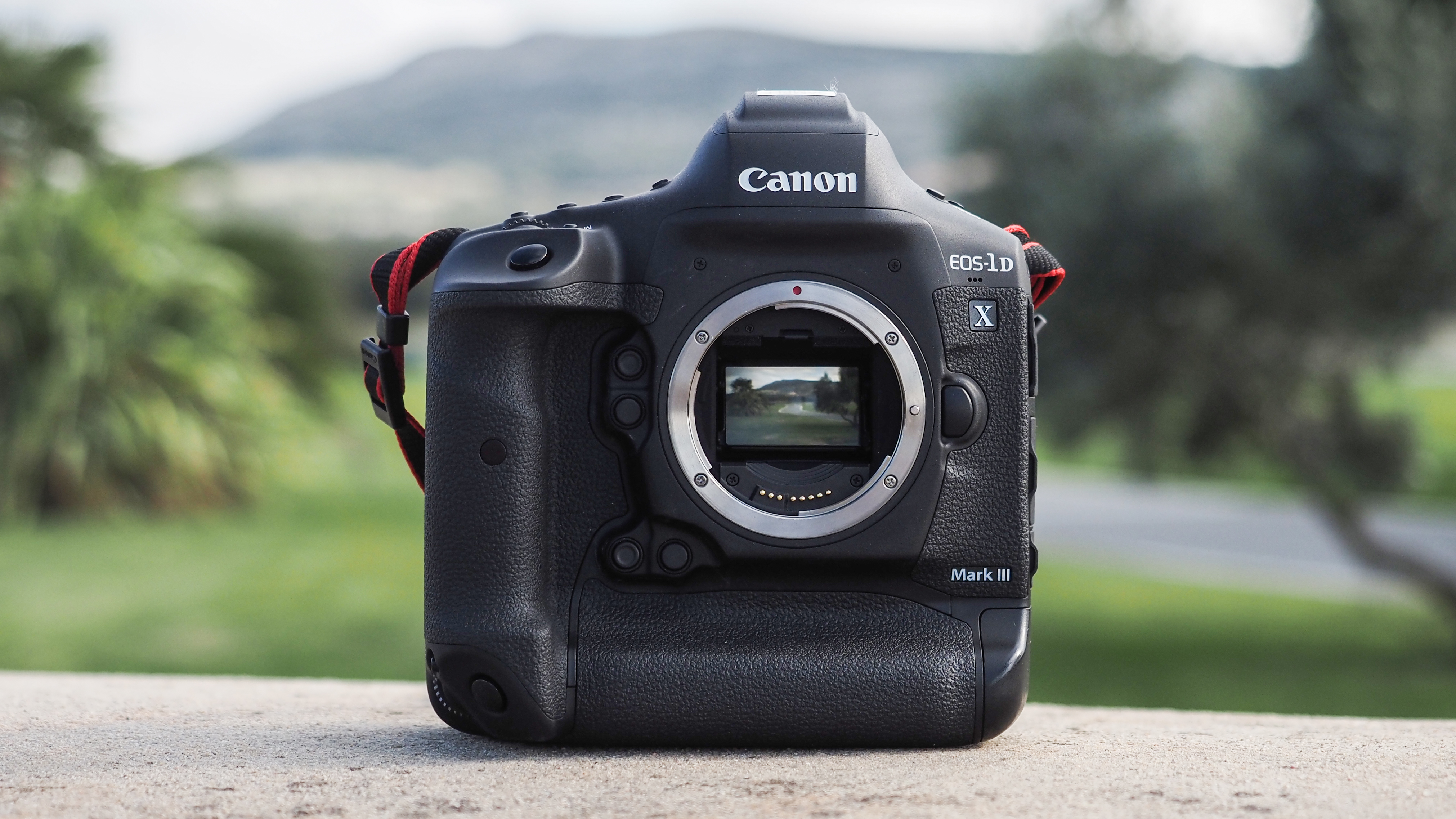 Best Dslr Cameras 2021 The best professional cameras in 2020 | Digital Camera World