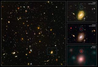 Massive Distant Galaxy Calls Theory into Question