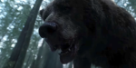 Reality TV Is Bringing Us A Show About Grizzlies Vs. Humans, Bring On The Backlash