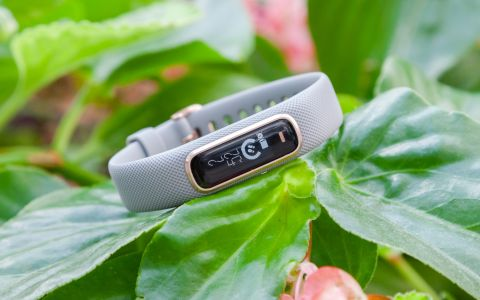 Garmin Vivosmart 4 Review: Great for Sleep, Falls Short on