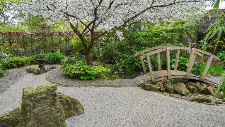 gravel path and bridge with blossom tree overhead for Japanese Zen garden ideas