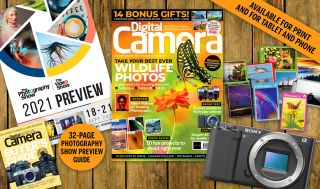 DCM246 new issue bundle image
