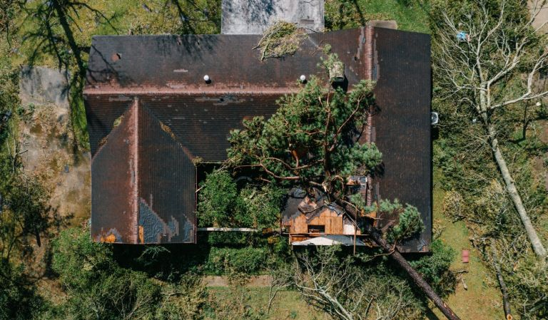 A house damaged by a fallen tree after Hurricane Laura made landfall in Louisiana, U.S. Photographer: Bryan Tarnowski/Bloomberg