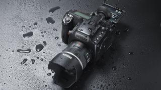 Pentax 645Z sensor