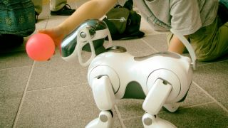 The end nears for Sony s robotic dogs