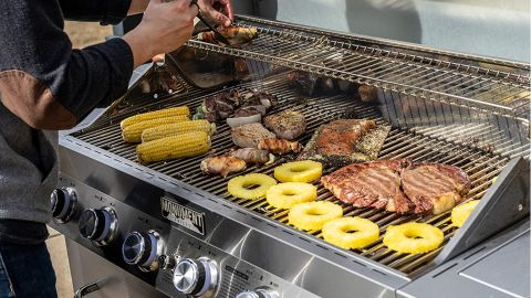 Monument Grills 77352 6 Burner Propane Gas Grill review