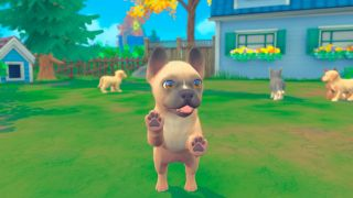 Puppies & Kittens game