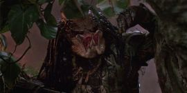 How To Watch Predator: A Newbie's Guide