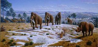 mammoth-mastodon