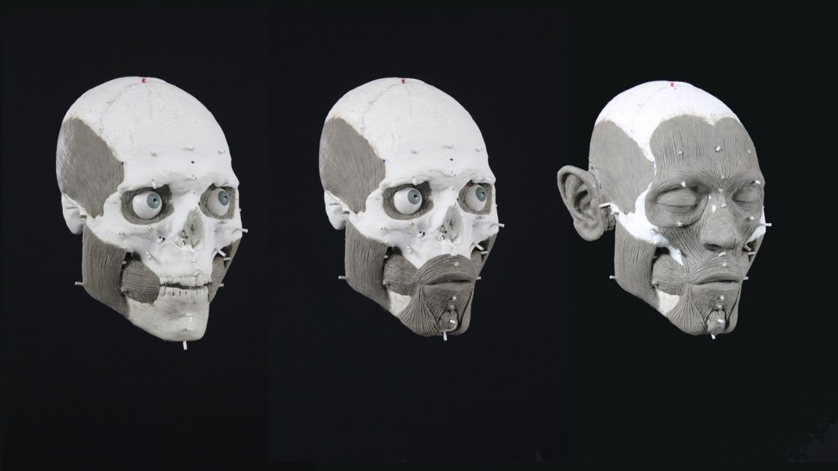 Stone Age man, whose skull was found on a spike, gets facial recreation (photos)