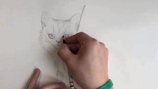 Pencil drawing of a cat with the sketcher's hand