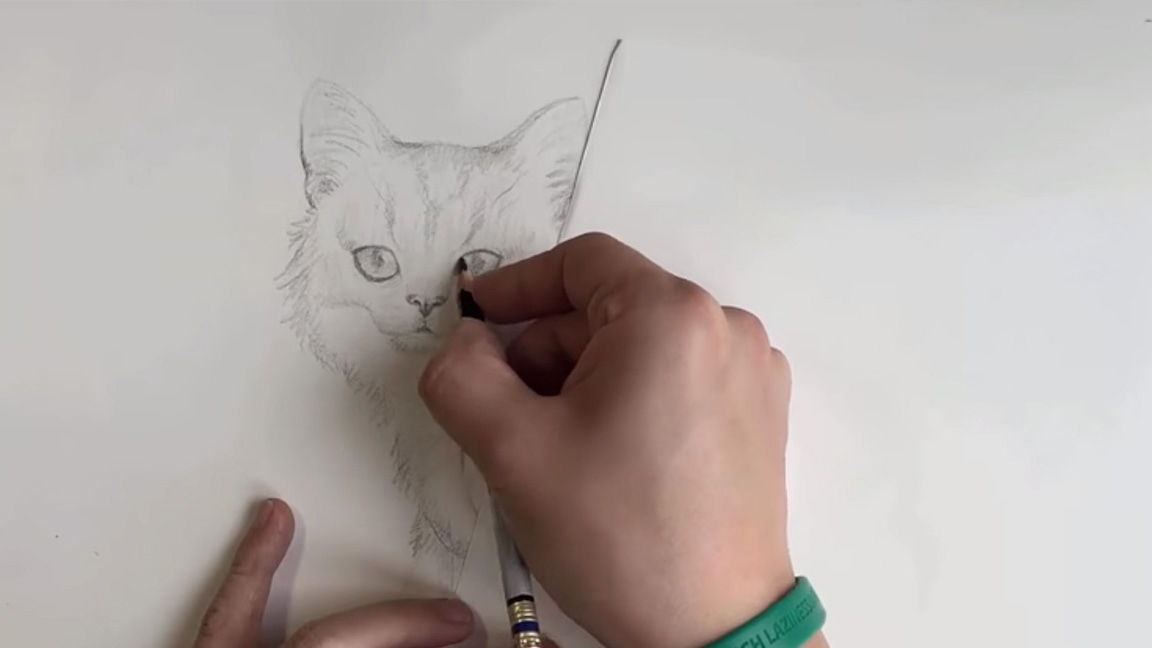 Person hand-drawing a cat