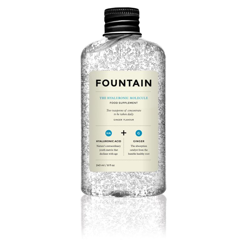 Photo of the Fountain The Hyaluronic Molecule