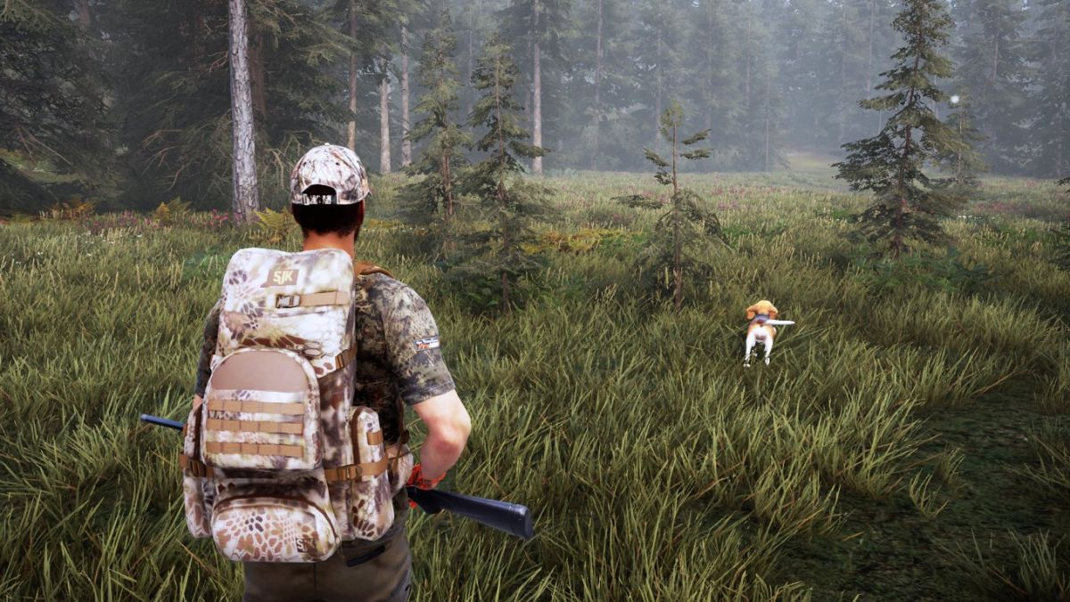 You can pet the dog (and take it hunting with you) in Hunting Simulator 2