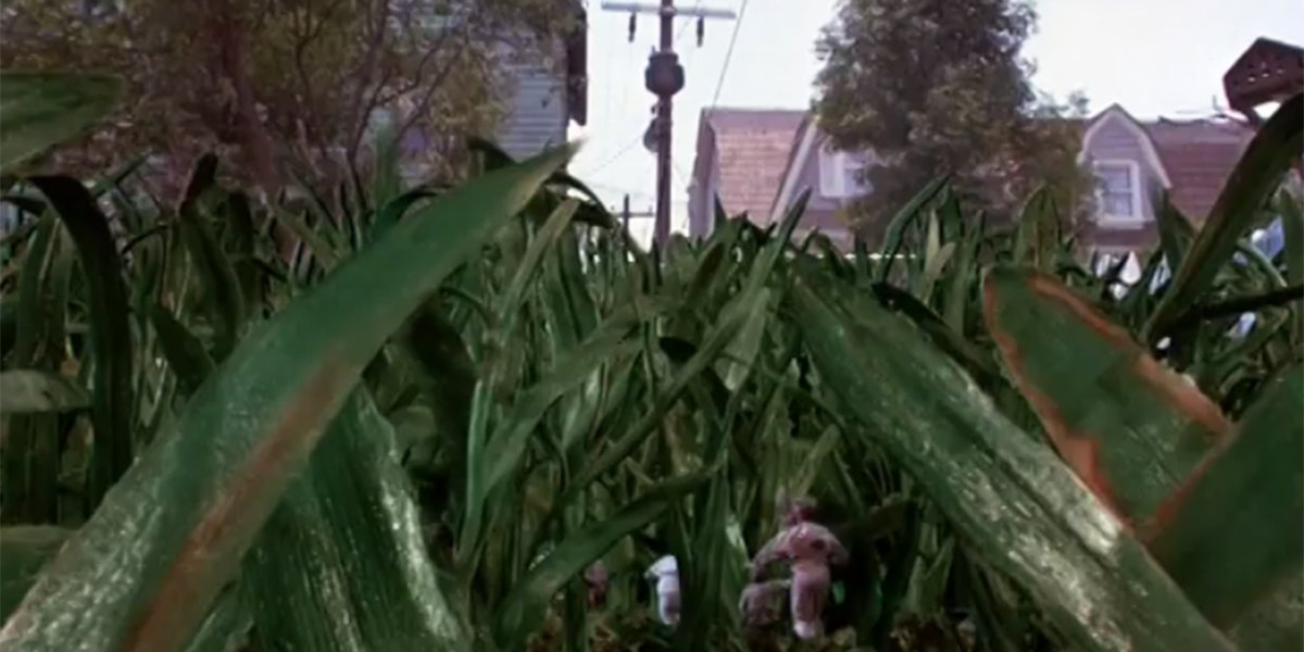 The kids running through the grass in Honey, I Shrunk the Kids