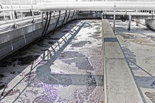 The Klosneuvirus was discovered here, at this wastewater treatment plant in Klosterneuburg, Austria.
