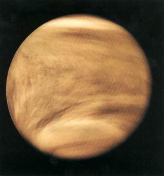 Ultraviolet Venus