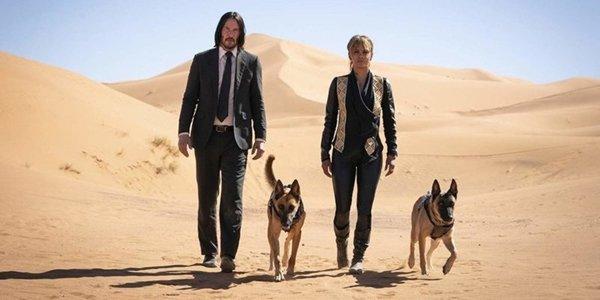 John Wick 3 Keanu Reeves Halle Berry dogs