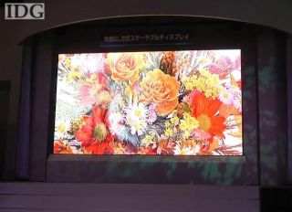 The MItsubishi 155-inch OLED TV