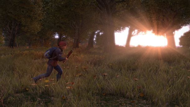 DayZ celebrates one year in Early Access, updated dev roadmap detailed