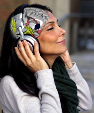 Brain areas linked with music appreciation