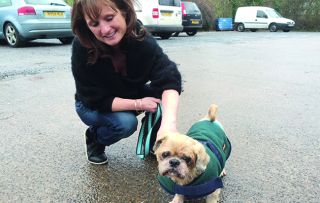 lan Davies returns to highlight the work of two busy RSPCA rescue centres over the Christmas period.