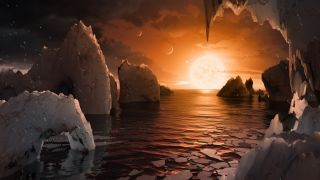 View from the Surface of a TRAPPIST-1 Planet
