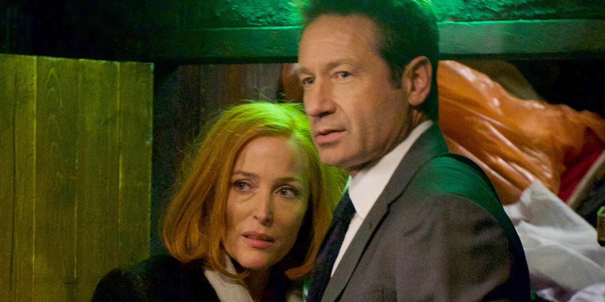 The X-Files Dana Scully Gillian Anderson Fox Mulder David Duchovny FOX