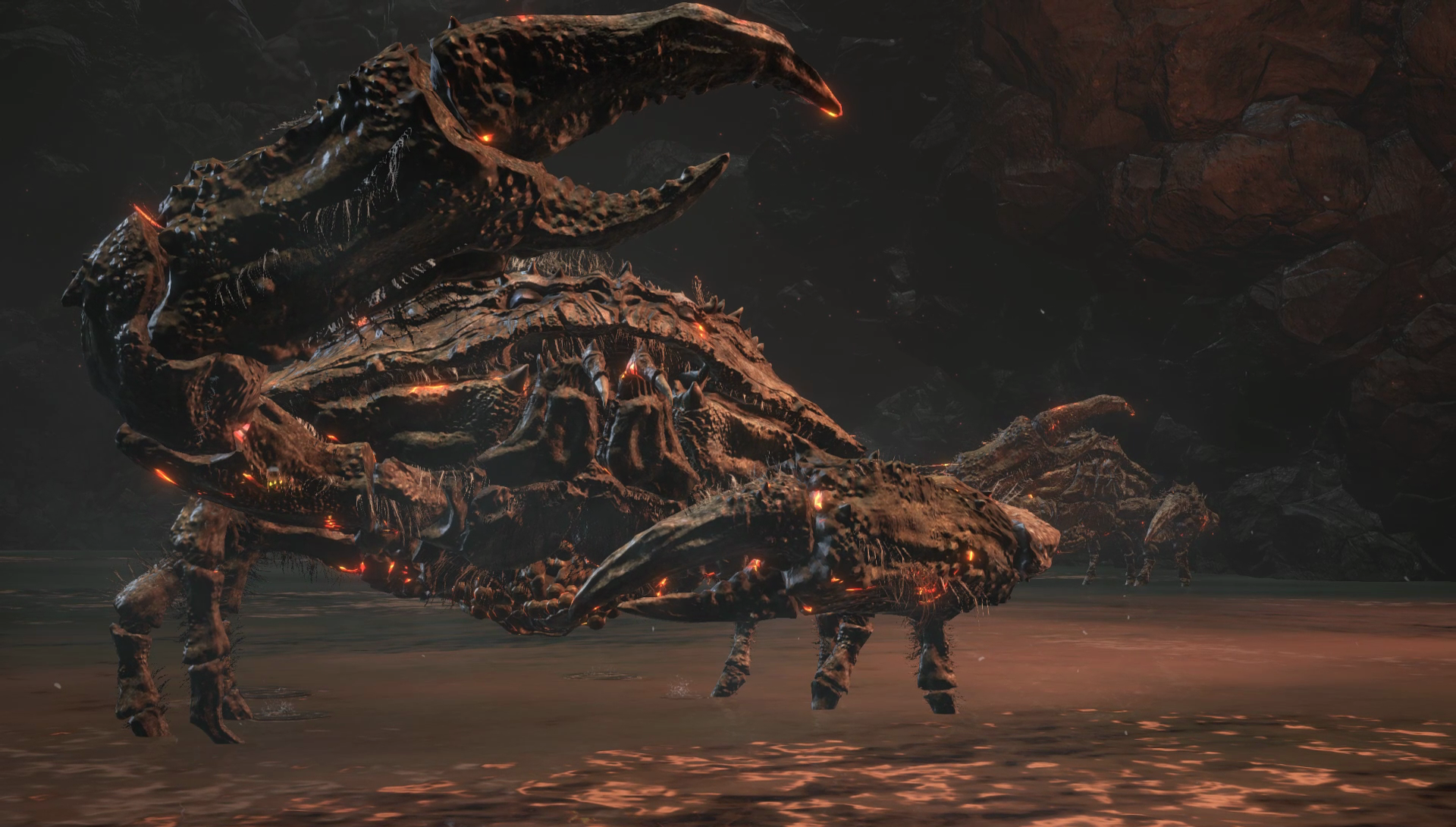 The mystery of the big dumb crabs infesting Dark Souls 3