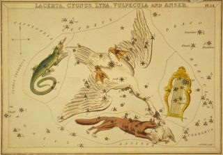 An 1825 etching shows the constellation Cygnus the swan.