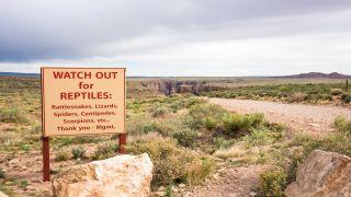 Snake warning sign at trailhead