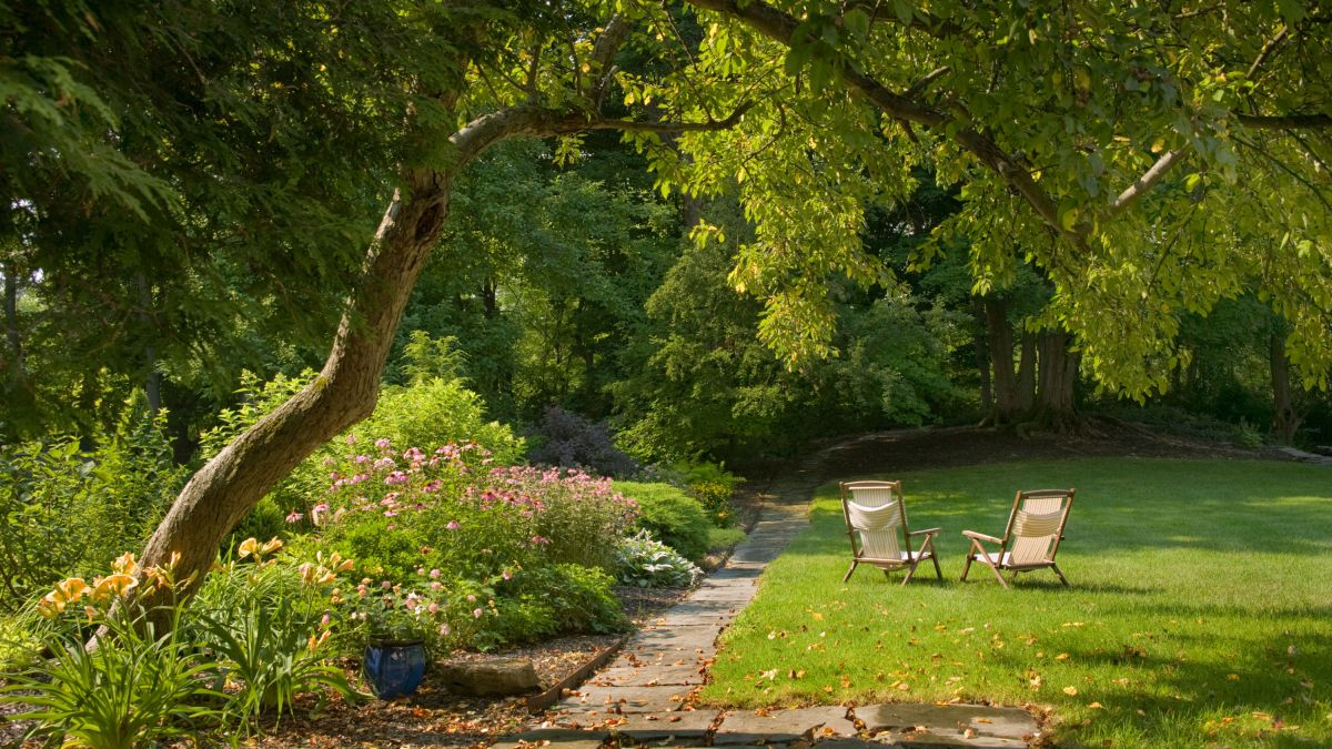 3 ways your garden can save you money – and add value