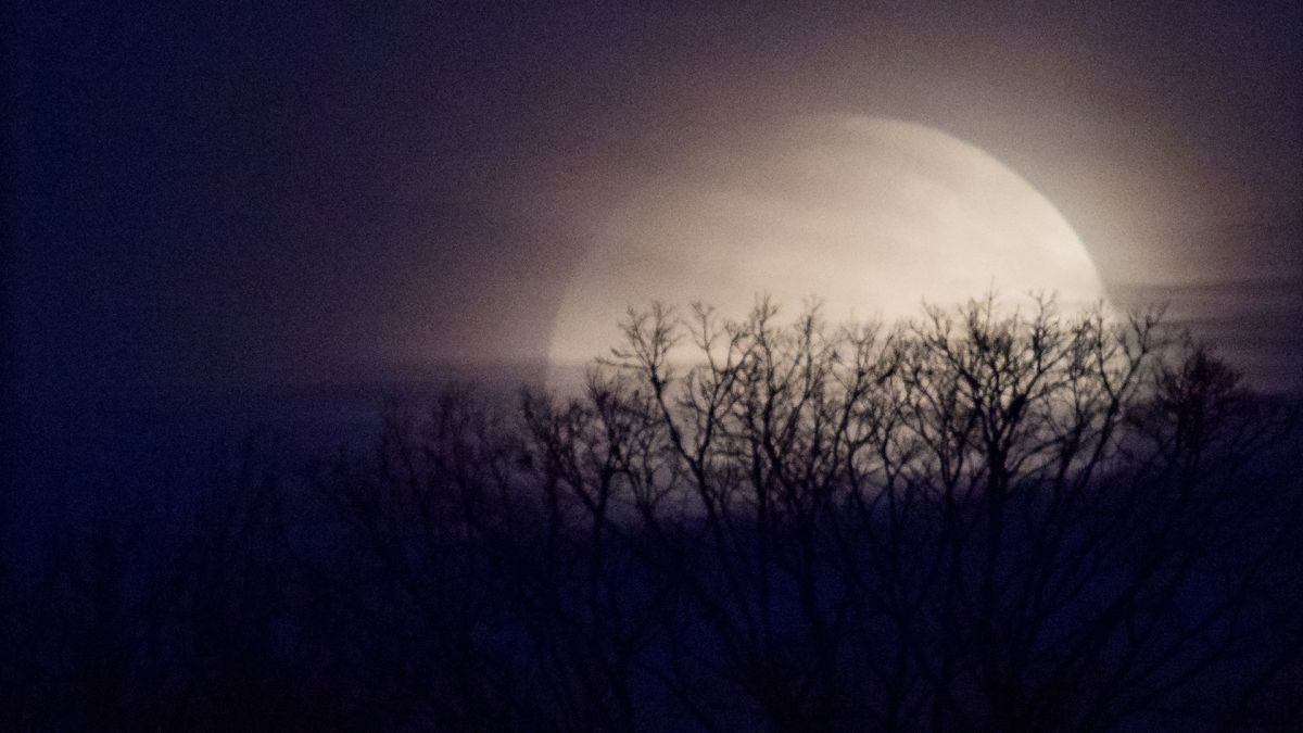Rare full moon on Halloween will be seen across the US for the first time in 76 years