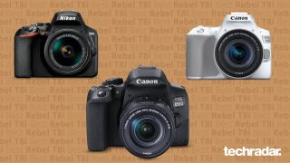 The Nikon D3500, Canon EOS Rebel T8i / 850D and Canon EOS Rebel SL3 / 250D DSLRs