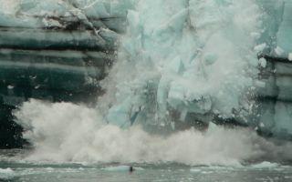 Glacier Bay National Park Archive