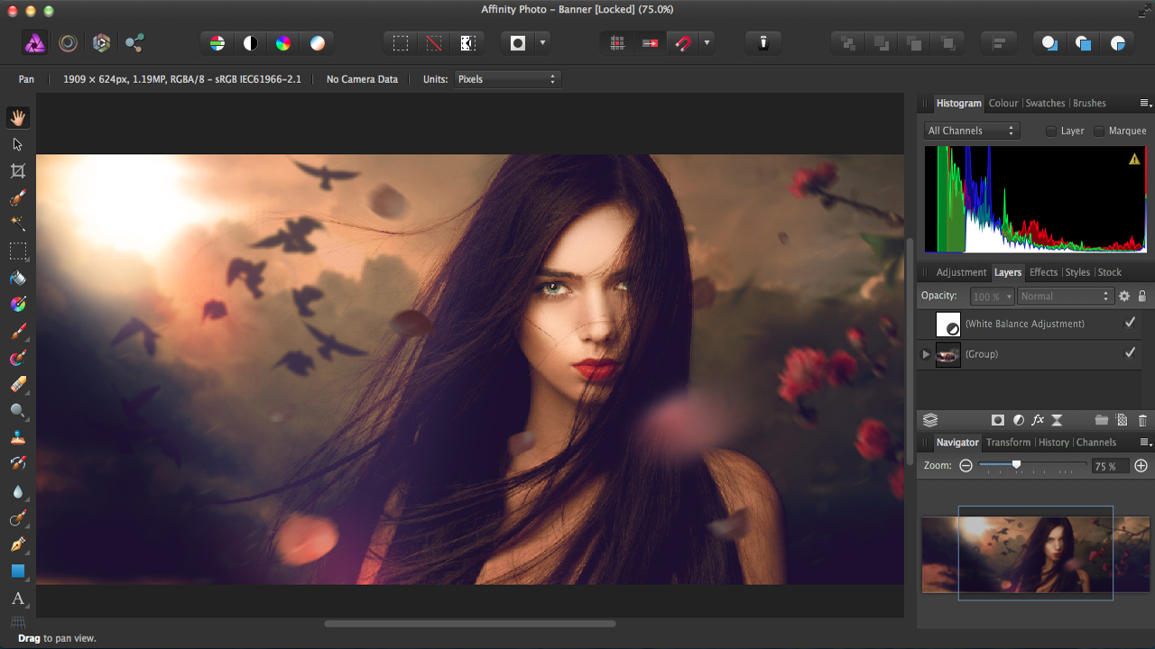 Serif Affinity Photo 1.8.5.703 + Crack Full Version Download