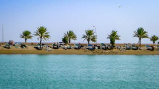 A row of palm trees and empty boats sit on the sand in Quriyat, Oman.