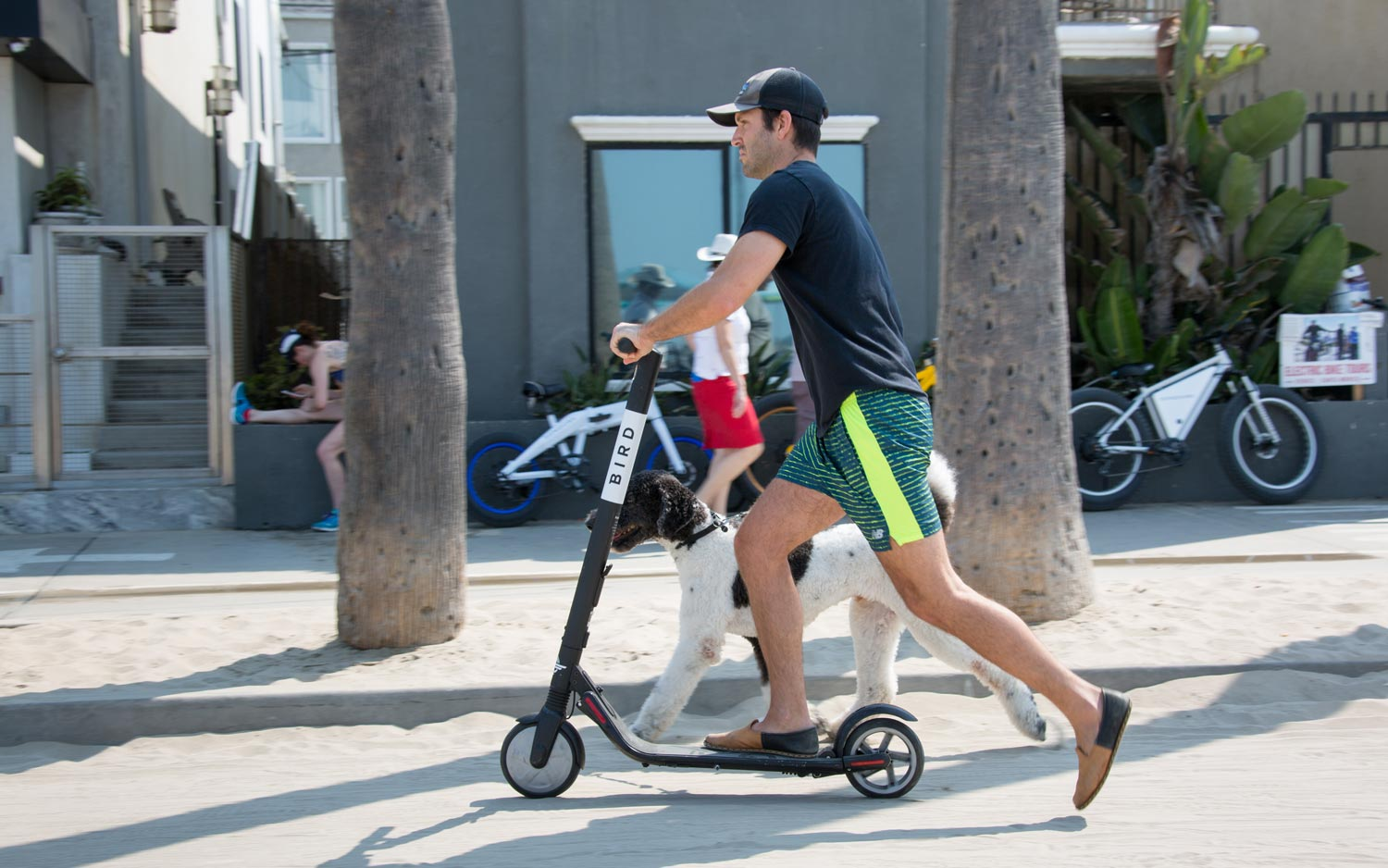 Why Bird and Lime Scooters Are Invading US Cities Everywhere | Tom's