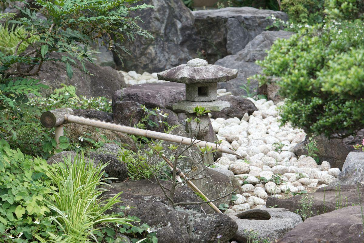 Rock garden ideas: 7 pretty rockery ideas and 20 best rock garden plants