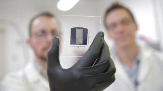 Carbon nanotubes UWM