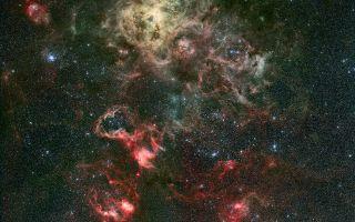 Portrait of a Dramatic Stellar Crib Tarantula Nebula