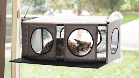 K&H EZ Mount Penthouse Kitty Sill Cat Bed mounted to window with tabby cat inside