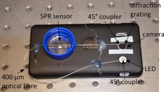 Fiber-optic sensor could enable smartphone pregnancy tests