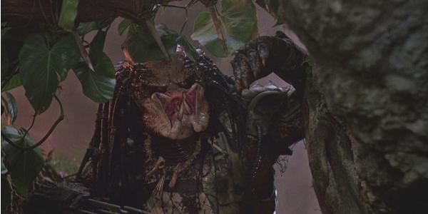 Predator Final Monster Peeking